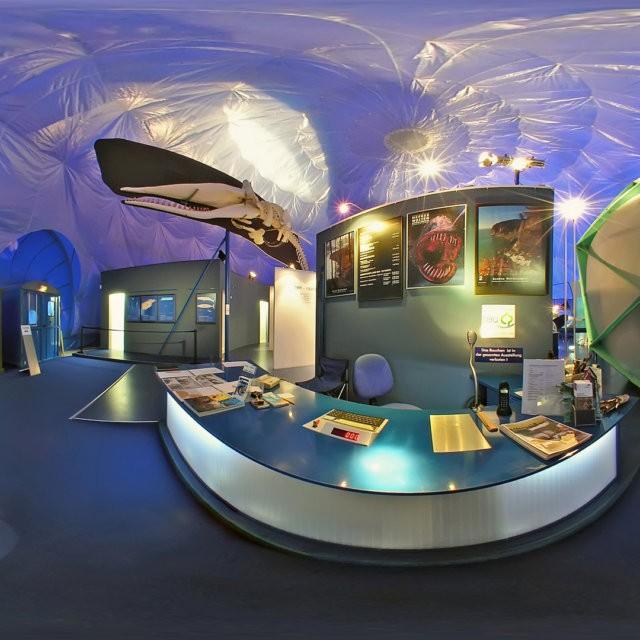 ausstellung meer museum